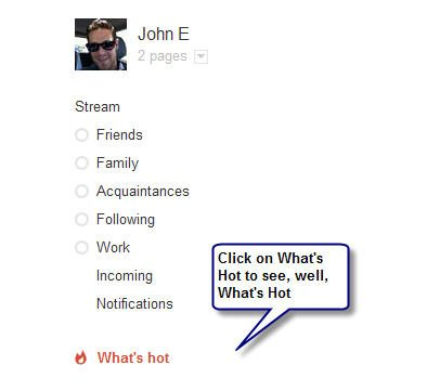 Google What's Hot