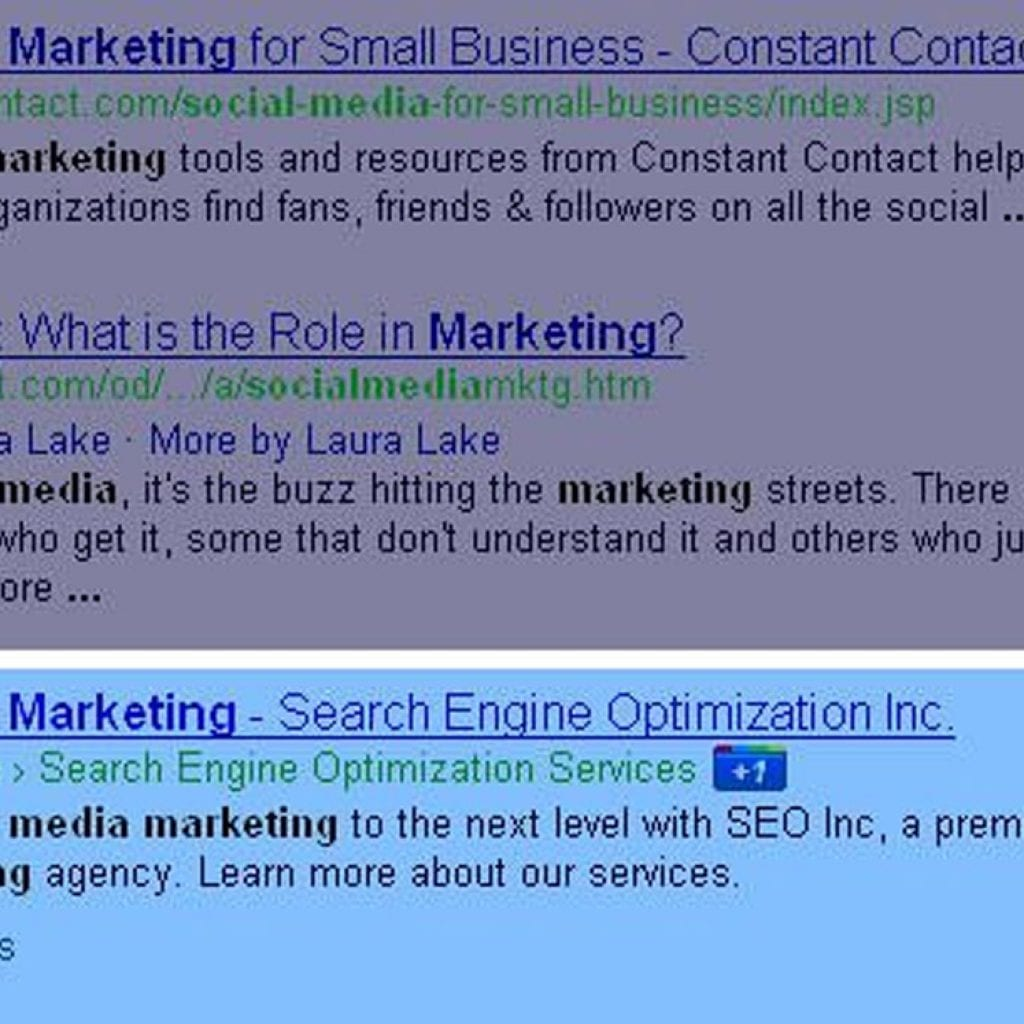 Google + Search Result SEO Inc. Social Media Marketing Page