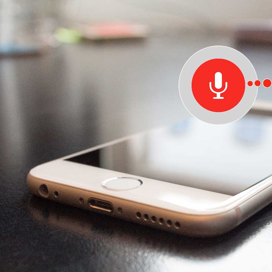 Google-Search-Voice-Phone
