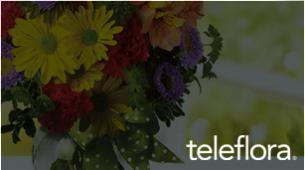 Teleflora Web Development