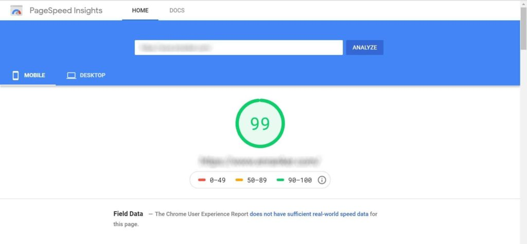 Page Speed score of 99